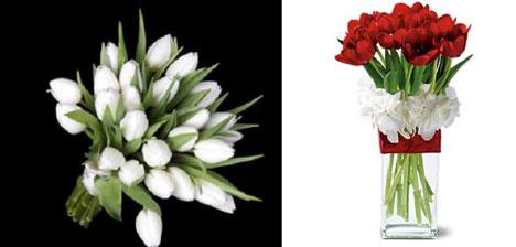 Wedding Flowers: tulips, white & red, bouquet & centerpiece